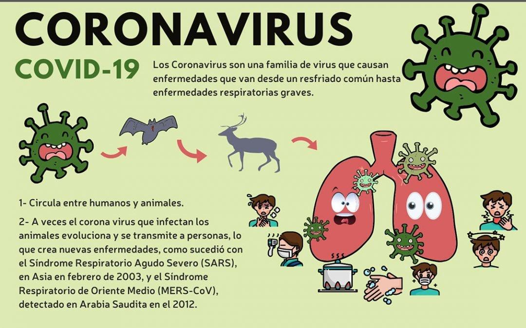 Todo lo que tienes que saber del Coronavirus COVID-19 actualizado.