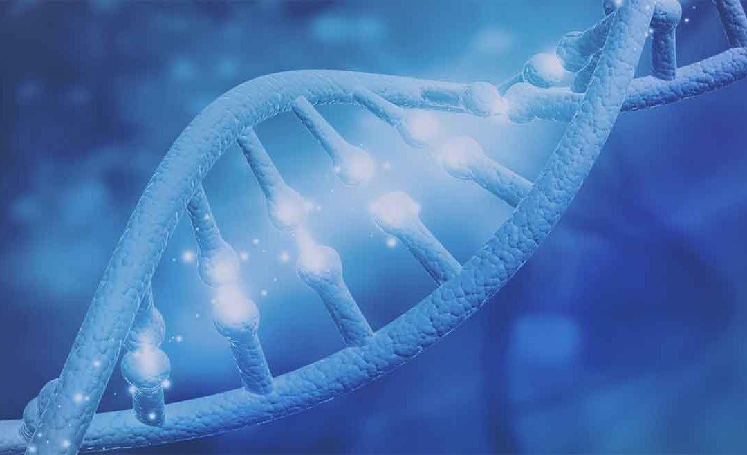 PCR en tiempo real para COVID-19 por Grupo GAMI